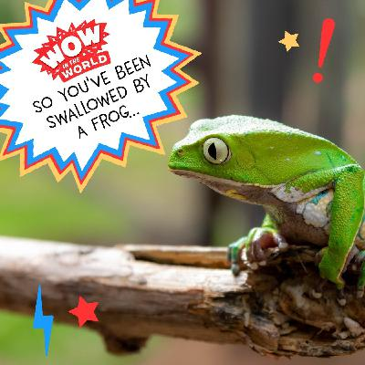So You've Been Swallowed By A Frog (Encore - 8/30/21)