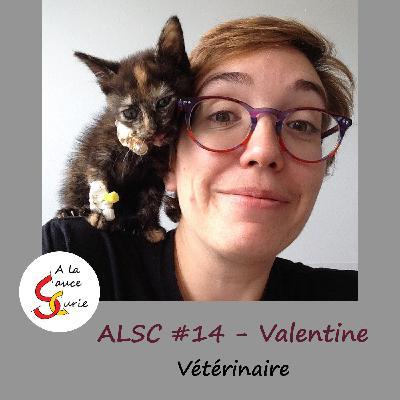 Valentine, vétérinaire, aimer les animaux et l'humain