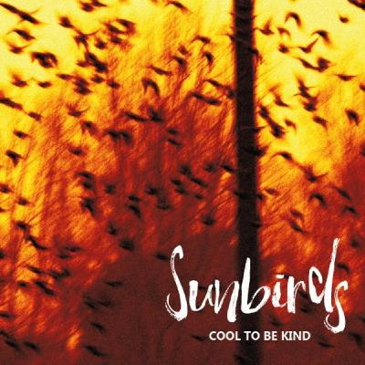 Sunbirds - The Dave Hemingway and Phil Barton Interview