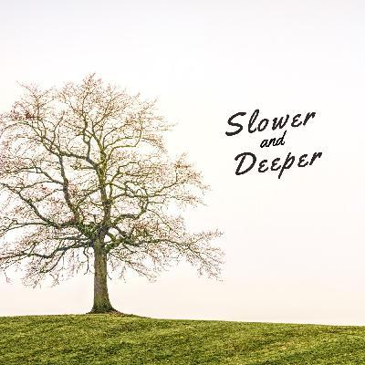 Slower and Deeper (Hebrews 10:19-25)
