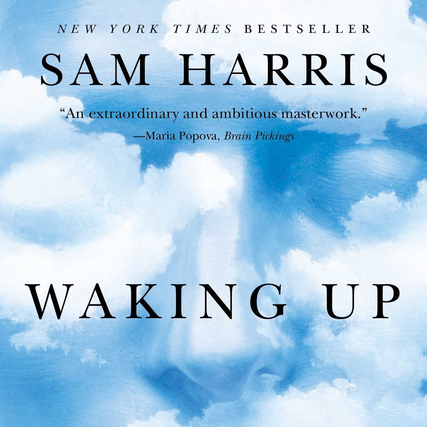"""Waking Up"" Review: Gaze Into the Abyss - Lifehacking Spirituality without Superstition"