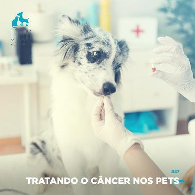 #47: Tratando o Câncer nos Pets