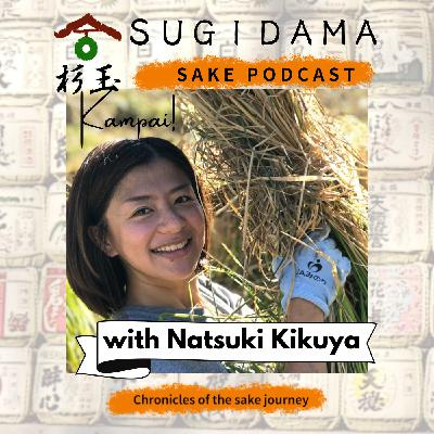 Through the time: the history of sake (Interview with Natsuki Kikuya)