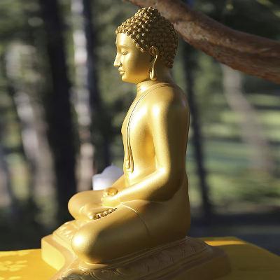 AJAHN MONEYYO Vesak Reflections: Marvellous Qualities of the Bodhisatta