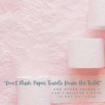 Don't Flush Paper Towels Down the Toilet, and Other Things I Can't Believe I Have to Say Out Loud