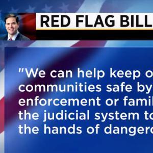 GOP Senator Introduces Bill Promoting Gun Confiscation