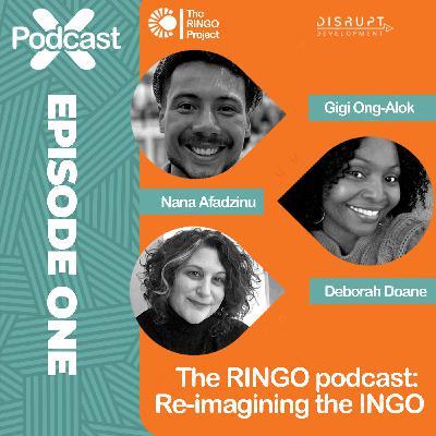 Re-imagining the INGO - The Origin