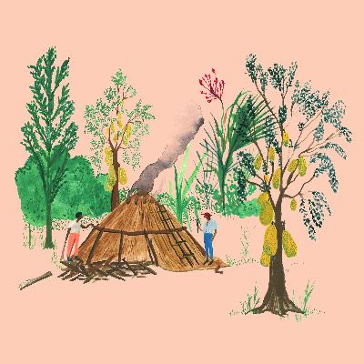 Rastros na floresta