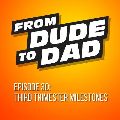 Third Trimester Milestones (A Summary For New Dads)