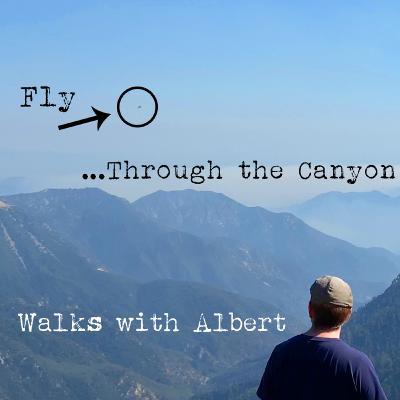Fly...Through the Canyon