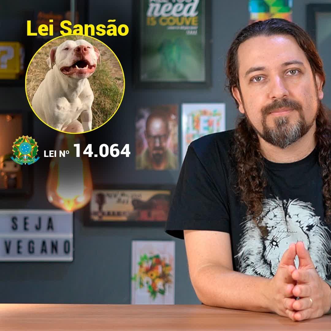 🐶🐱 Agora é Lei: Cadeia para quem maltrata cães e gatos! Lei Sansão / Lei nº 14.064