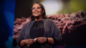 A climate change solution that's right under our feet   Asmeret Asefaw Berhe