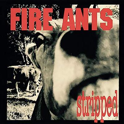 The Fire Ants Special Guests // INDIE RAGE RADIO EP #25 HR 1