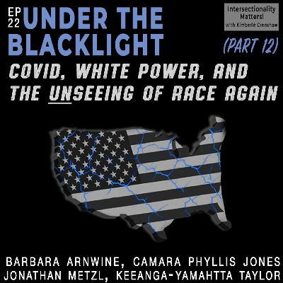 22. COVID, White Power, and the Unseeing of Race Again