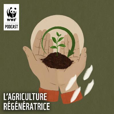 L'agriculture régénératrice