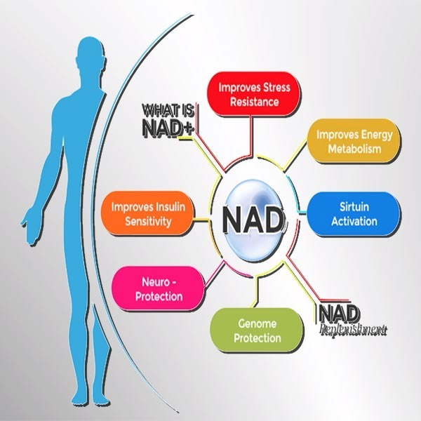 What is the best way to supplement NAD+?