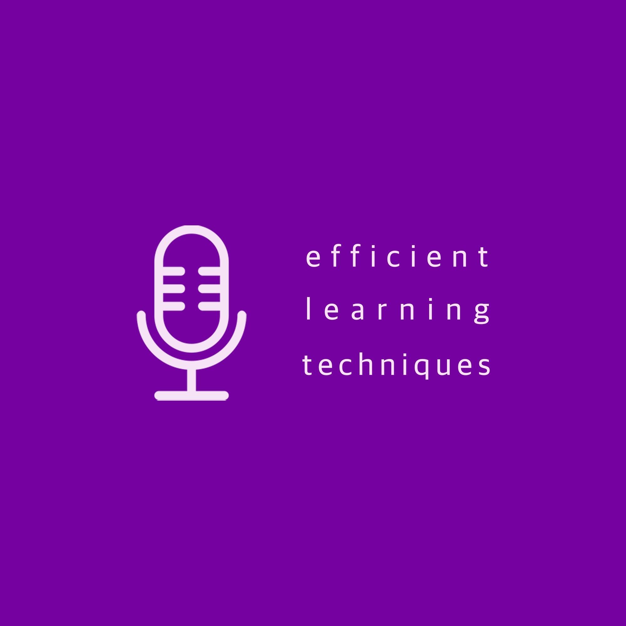 Efficient Learning Techniques