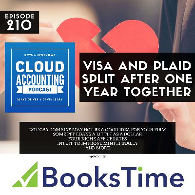 Visa and Plaid Split After Nearly One Year Together