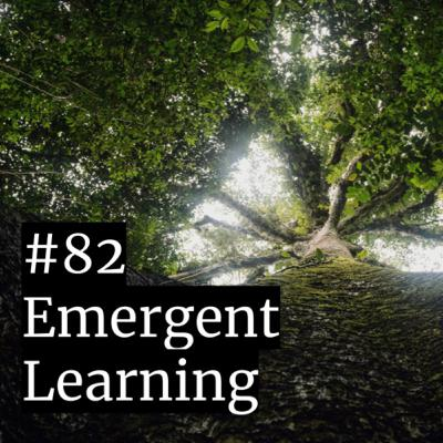 #82: Emergent Learning