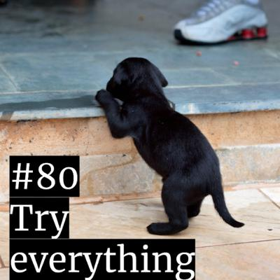 #80: Try everything? Yeap.