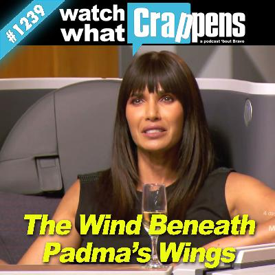 TopChef: The Wind Beneath Padma's Wings