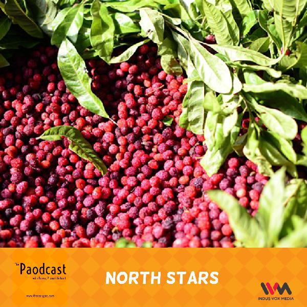 Ep. 70: North Stars