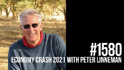 1580: Economy Crash 2021 With Peter Linneman