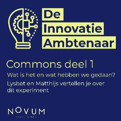 Commons, wat is het en waarom hebben we hier een experiment mee gedaan?