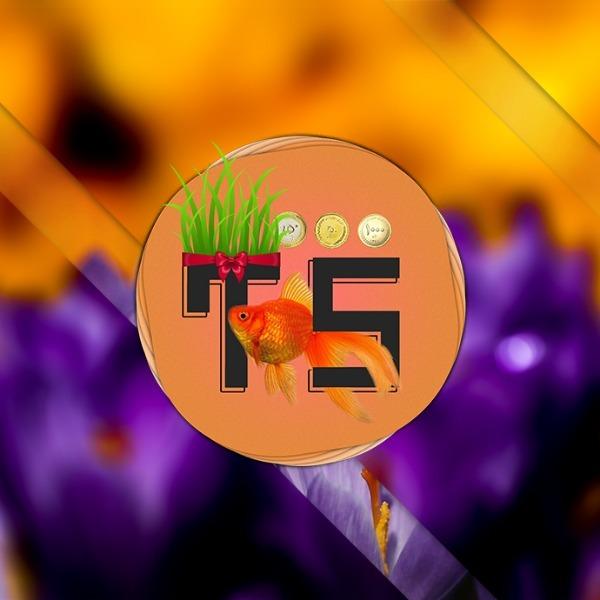 بهار 98 با اعضای تیله سافت - امیر هوشمند