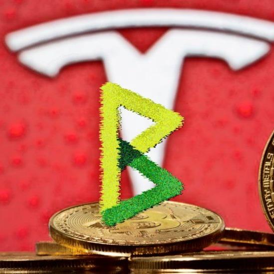 Block Digest #263 - Tesla Saves Bitcoin! Praise Elon!