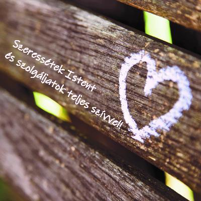 Szeressétek Istent és szolgáljatok teljes szívvel! - Józsué 22:1-8