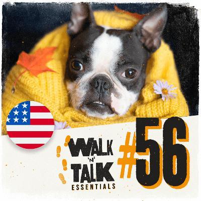 Walk 'n' Talk Essentials #56 - Um cachecol minúsculo!