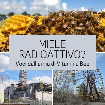 Miele radioattivo?