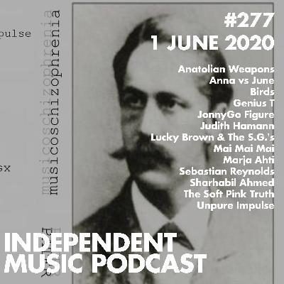 #277 - The Soft Pink Truth, Marja Ahti & Judith Hamann, Anatolian Weapons, Sebastian Reynolds, Birds - 1 June 2020