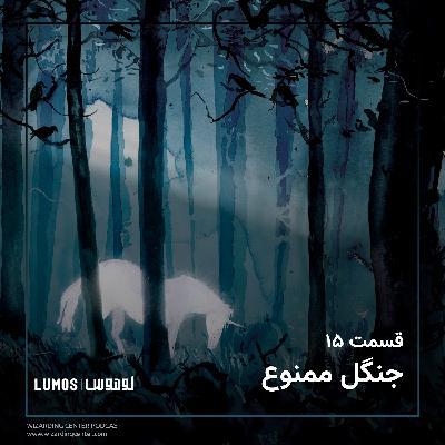 قسمت ۱۵: جنگل ممنوع