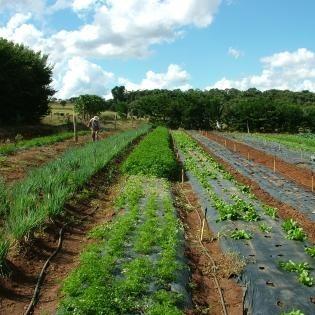 Atenção Produtores da Agricultura Familiar