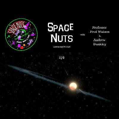 172: Tabby's Star Theory