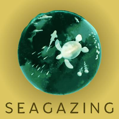 Welcome to SeaGazing! (Trailer Episode)
