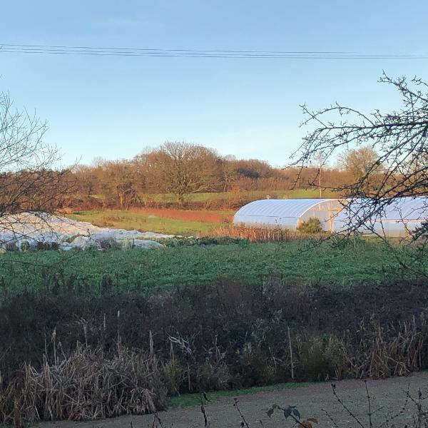 Tablehurst Farm