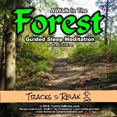 Forest Walk Sleep Meditation