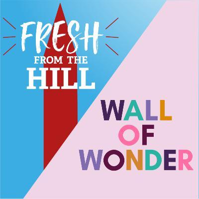 Introducing: Wall of Wonder