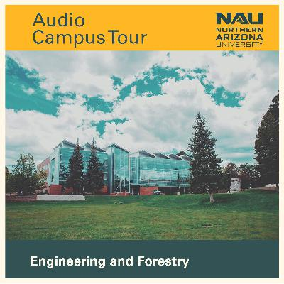 NAU's Audio Campus Tour: Stop 22 - Engineering and Forestry