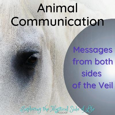 Animal Communication: Messages from Both Sides of the Veil