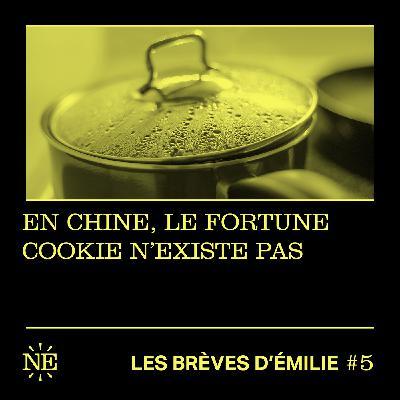 Les Brèves d'Émilie - En Chine, le fortune cookie n'existe pas (#5)