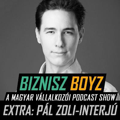 Extra - Ügynökségi hatékonyság csúcsrajáratva: folyamatok, automatikák — Pál Zoli interjú