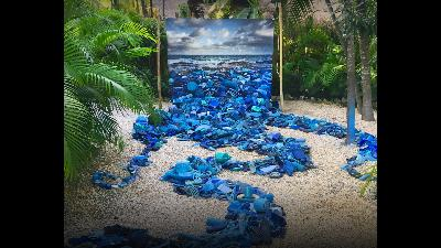 How I use art to tackle plastic pollution in our oceans | Alejandro Durán