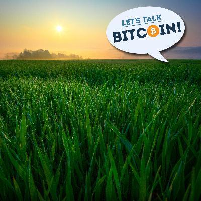 LTB!: BitTorrent Creator Bram Cohen on Coronavirus Second Order Effects and Improving on Bitcoin