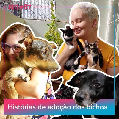 #87 - Histórias de adoção dosbichos