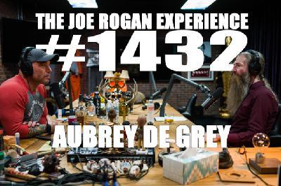 #1432 - Aubrey de Grey