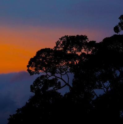 Mongabay Explores Sumatra, Episode 1: A land like no other